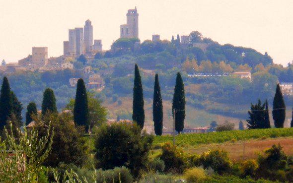 Francigena in terra di Siena 6