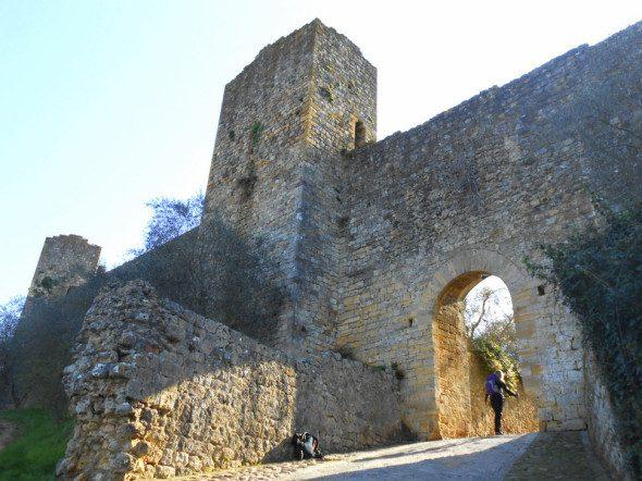 Francigena in terra di Siena 14