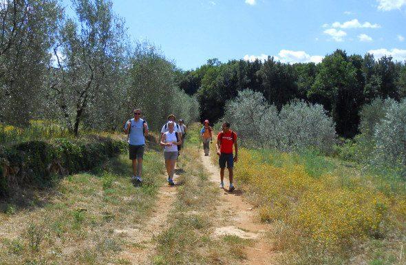 Francigena in terra di Siena 7