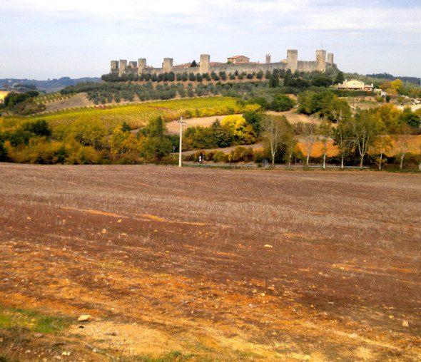 Francigena in terra di Siena 9