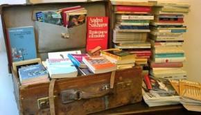 biblioteca wladen