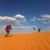 iran deserto walden