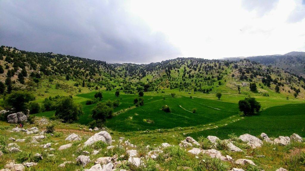 libano 3