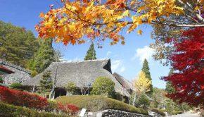 shikoku 88 templi